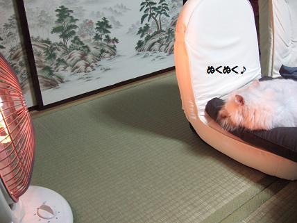 2009_1025みゅう0001