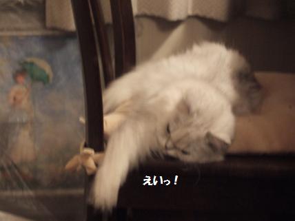 2009_0919みゅう0007