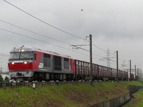 P1220325 (2)