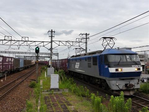 P1220031 (2)