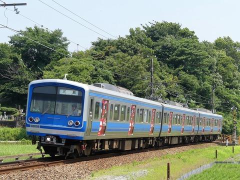 P1210563 (2)
