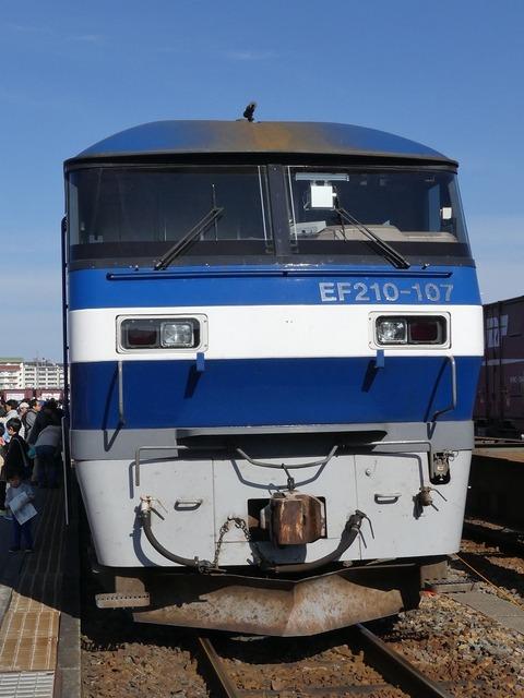 P1240195 (2)