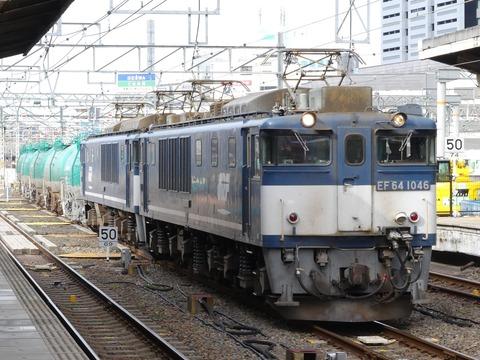 P1250079 (2)