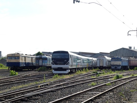 P1210729 (2)