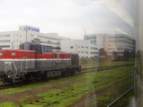 P1220118 (2)