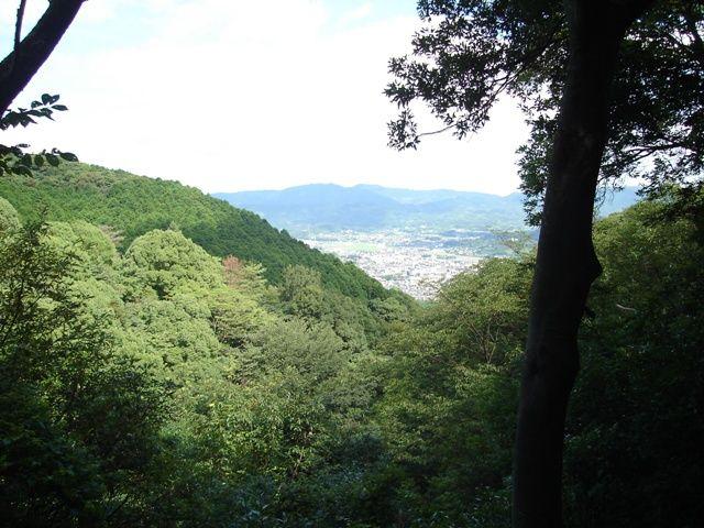 途中の登山道からは臼杵市の町 ...