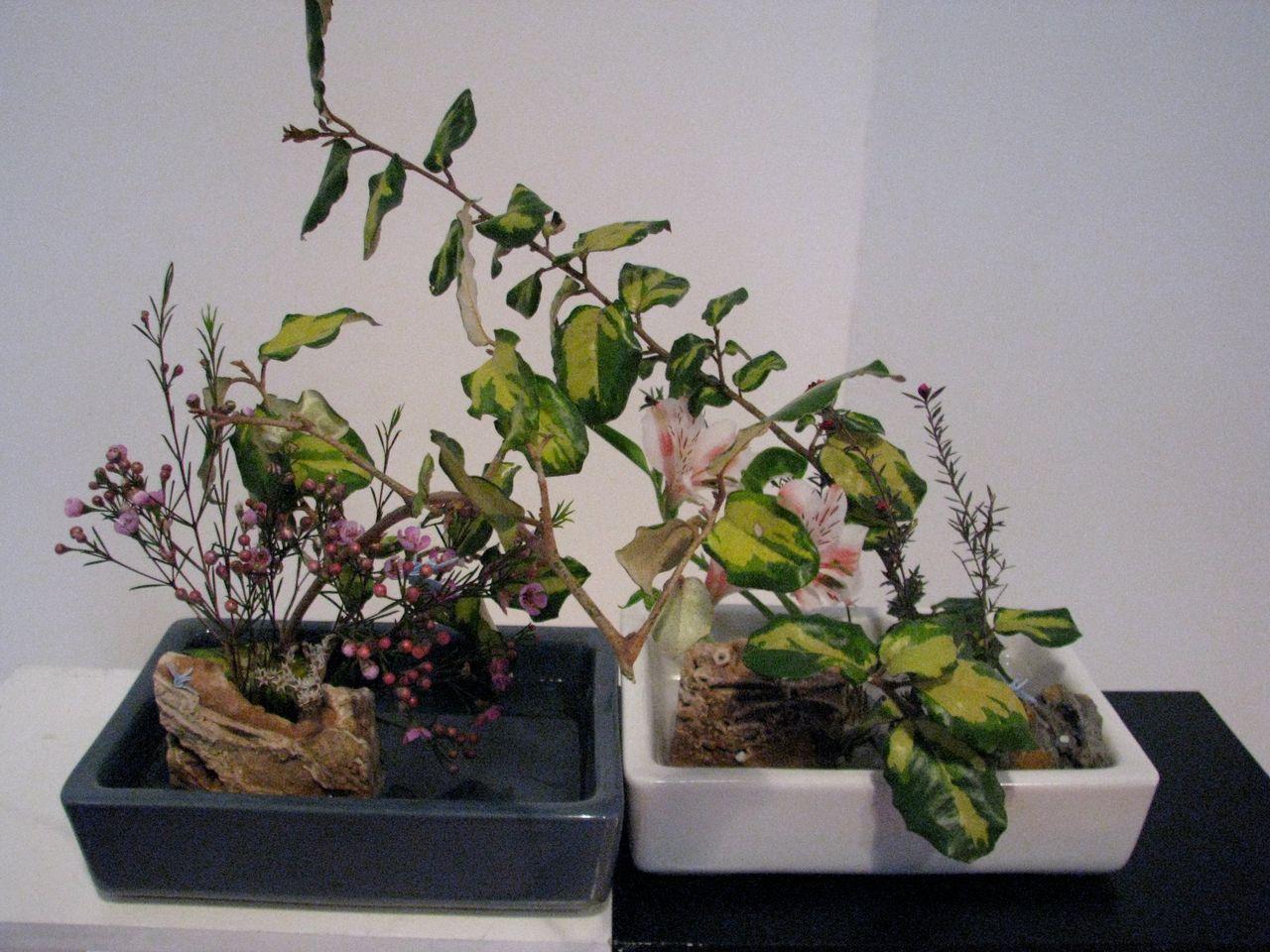ikebana por la paz