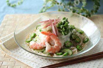 えびとたっぷり和野菜のぶっかけそうめん ヨコ (5)