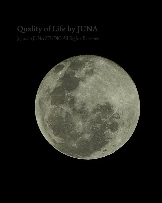 今年最後の満月の写真を・・・