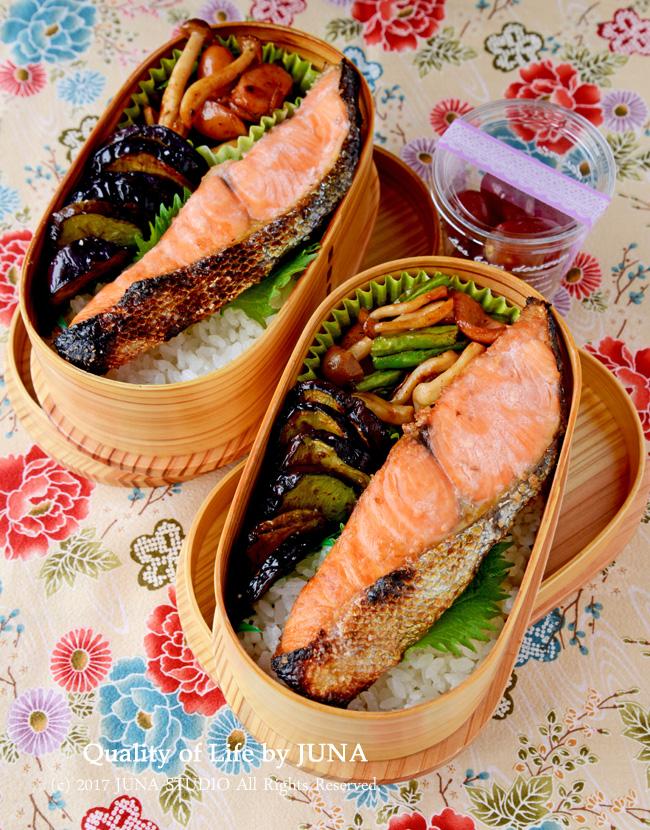 【今日のおべんと】塩鮭弁当