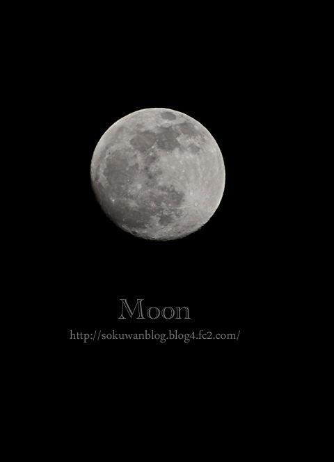 月 と オムライス