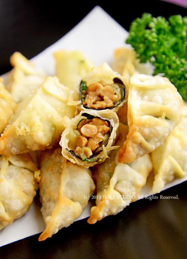 natto-gyouza-b3