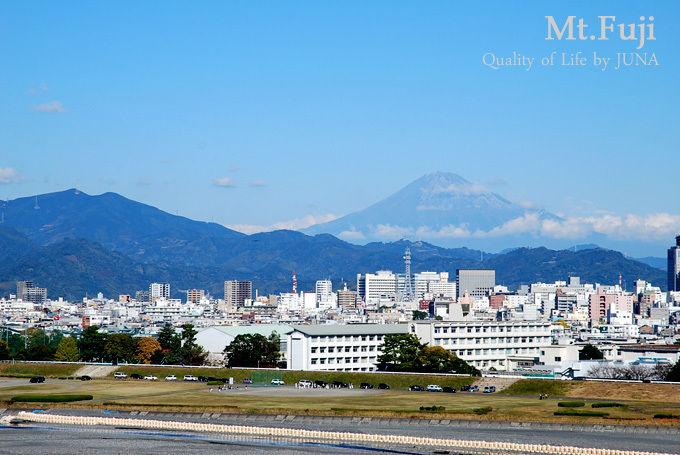 shizuoka-p2.jpg