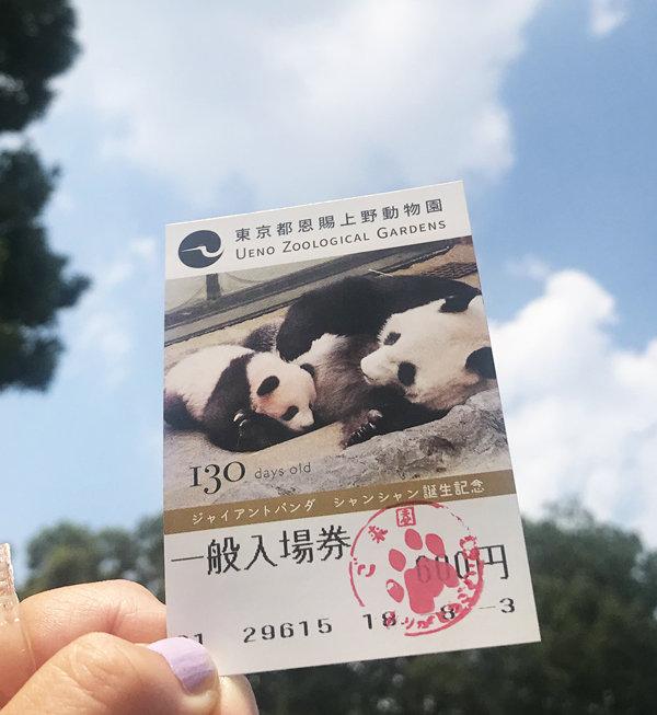上野動物園入場券