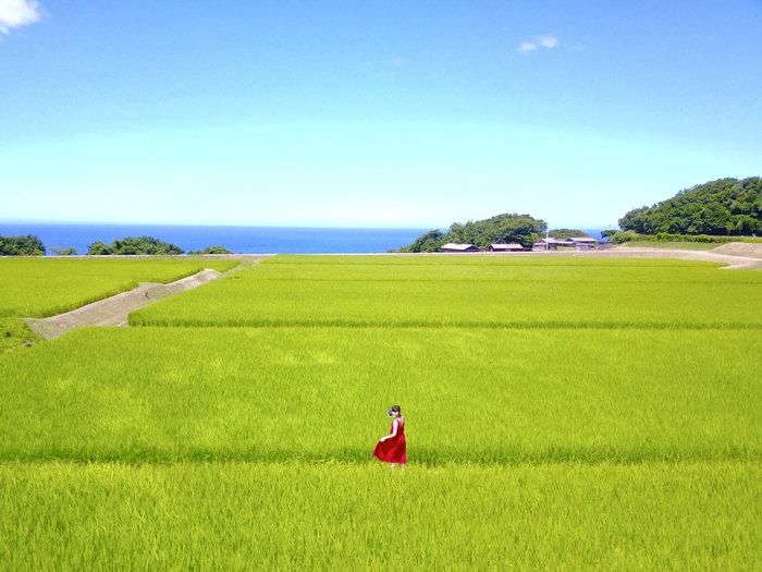 尖閣湾とまこ700DJI_0079