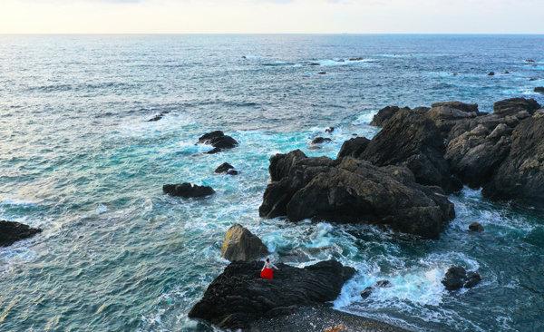 室戸岬とまこ600DJI_0872