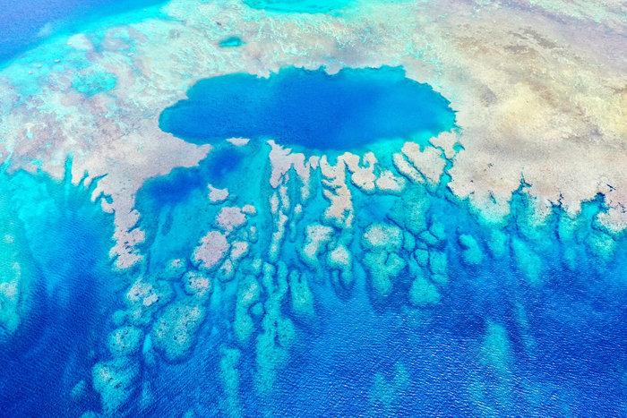 富野サンゴ礁700