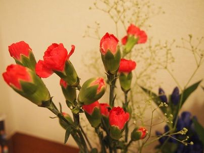 flower20140625b