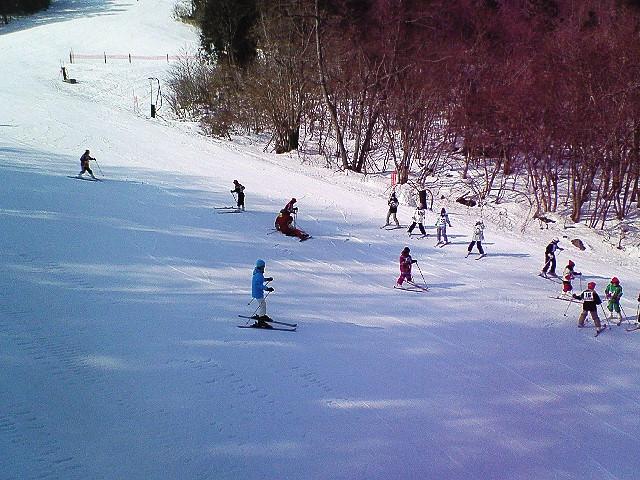 ちく さ 高原 スキー 場 天気 マキノ高原マキノスキー場(積雪・天気)