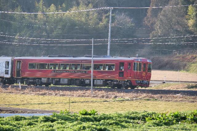 PANA3547