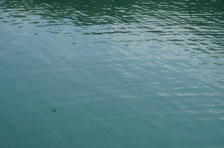 20袋湾(水が湧いている)1