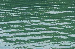 21袋湾(水が湧いている)2