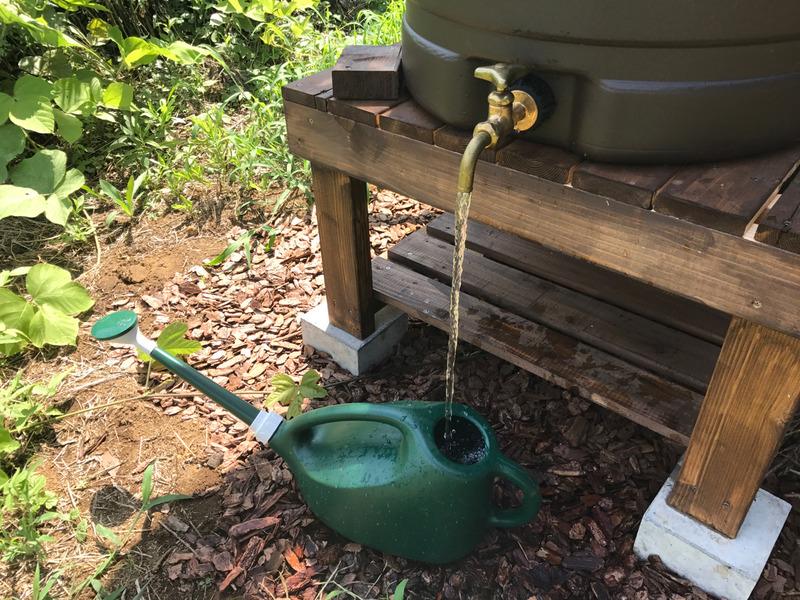 【DIY】雨水タンク:その後