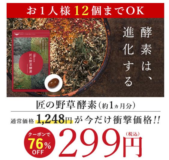 【急げ!】無添加100%の「匠の野草酵素」1年分を458円でGETする方法