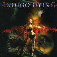 0270Indigo Dying