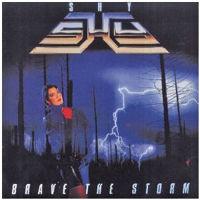 0289Brave The Storm