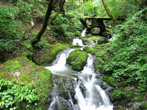 天滝 登山道 道中の川