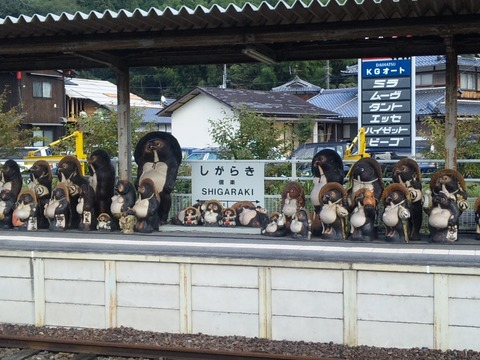 信楽駅のたぬき 写真