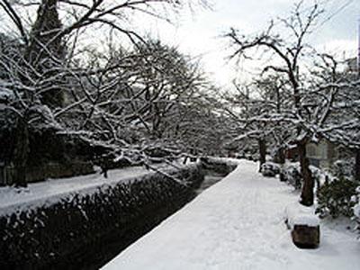冬の哲学の道