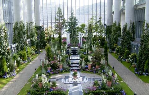 淡路夢舞台 奇跡の星の植物館 写真