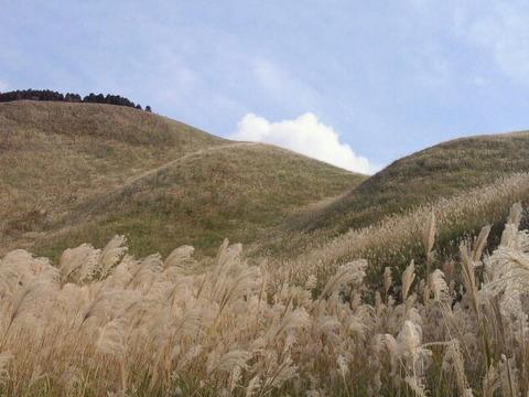 曽爾高原 眺め 写真