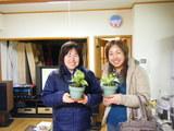 ラスTon観葉植物