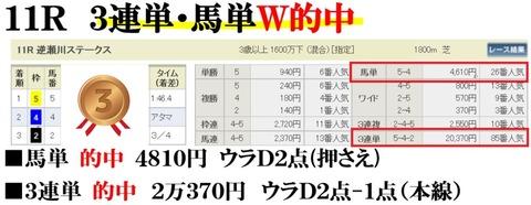 阪神11R