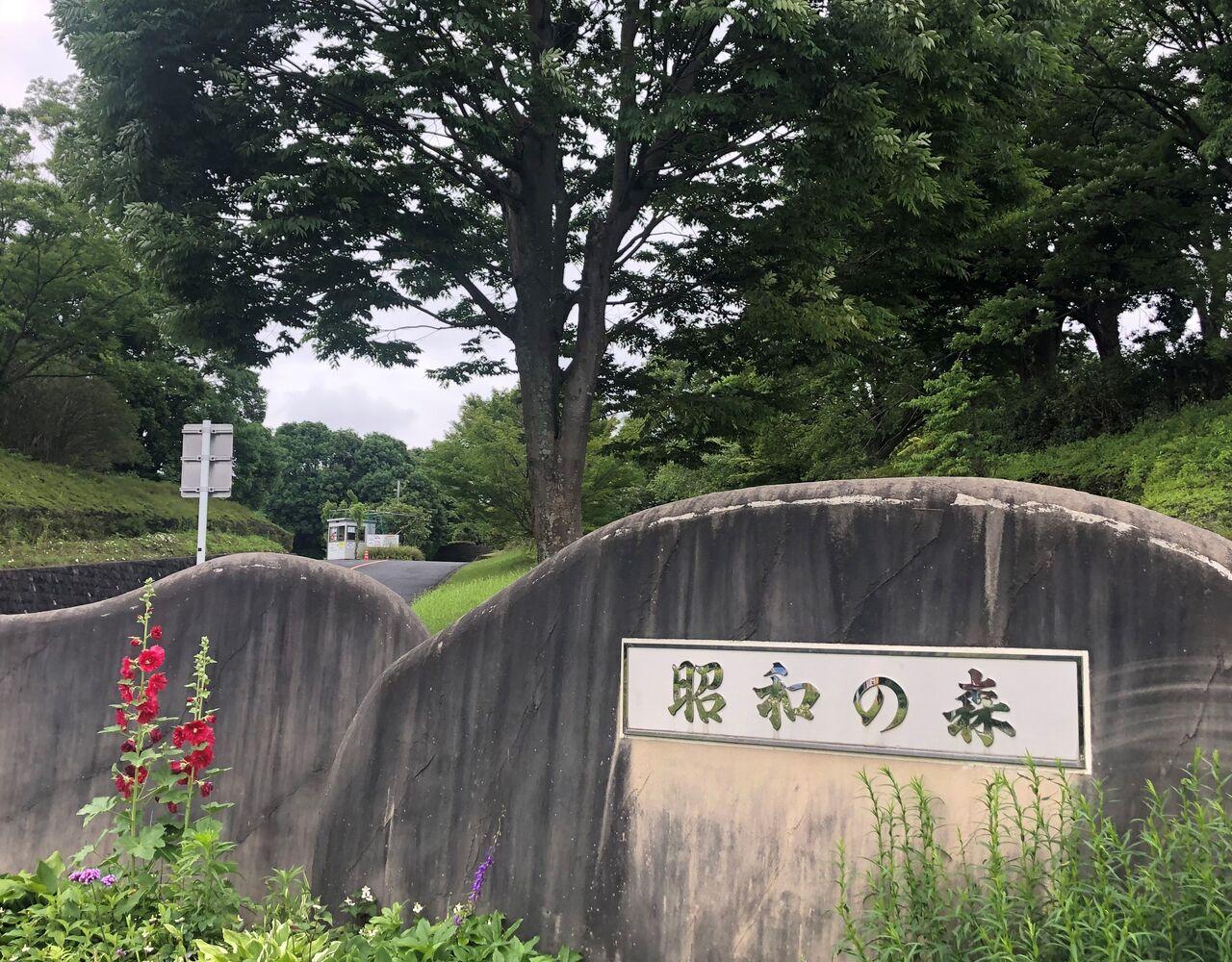 昭和の森駐車料金が1時間100円へ!あすみが丘消防出張所は令和2年度完成へ!