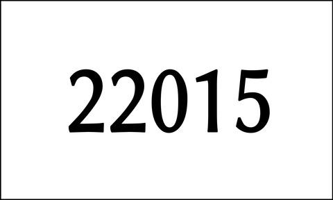 東大22015