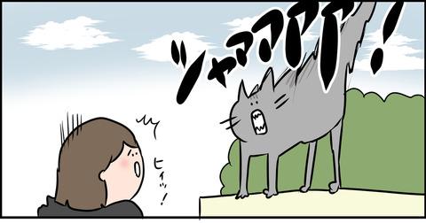 猫ちゃんは凶暴