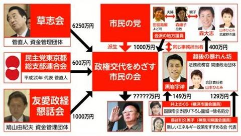 菅直人と市民の党2