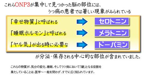 kiji2-4