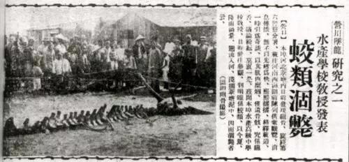 シナで発見された龍の死骸7