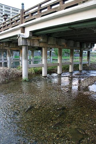 20091013盛岡散策