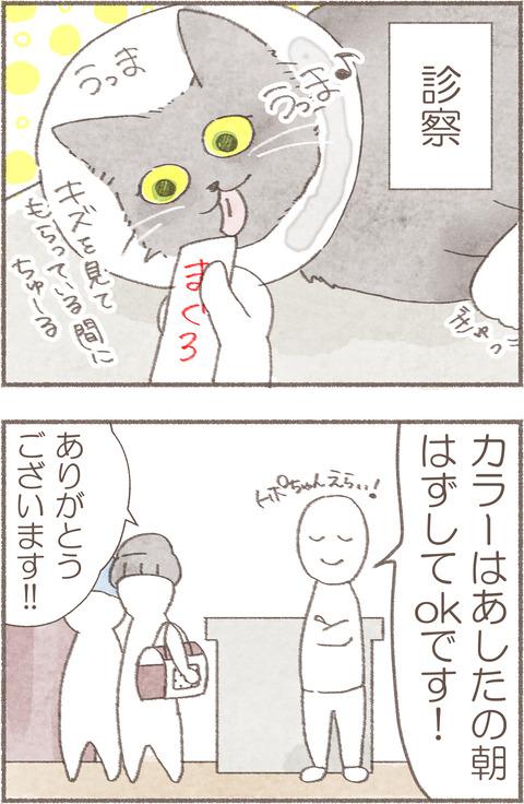 5トポえりまき3.1