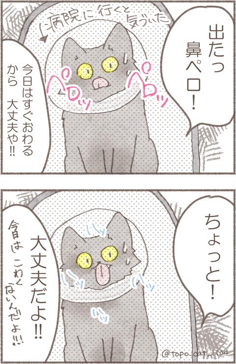 3.トポえりまき1.2