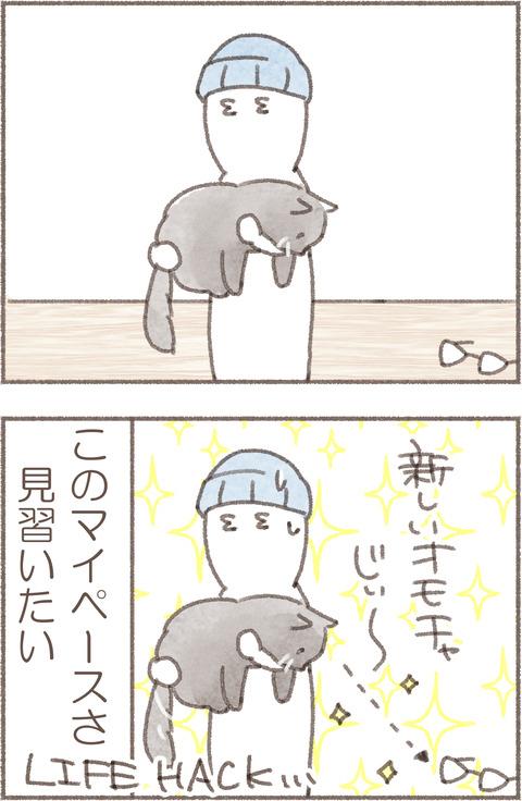 1.トポめがね4