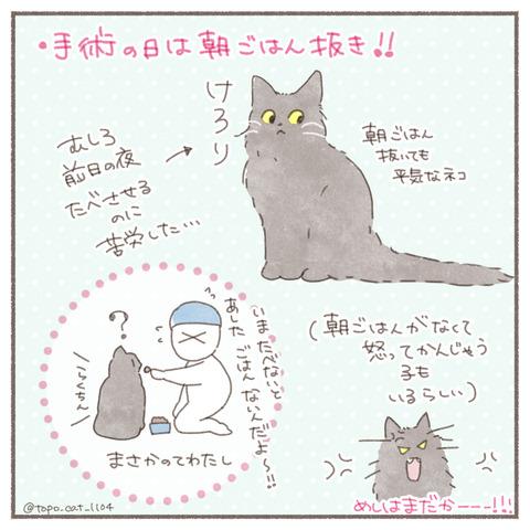 トポ手術9