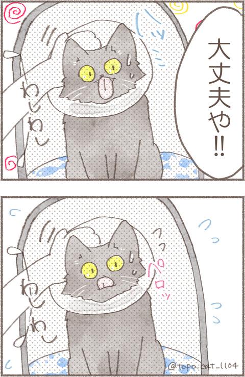 4.トポえりまき2.2