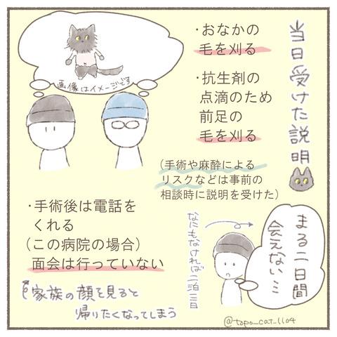 トポ手術3